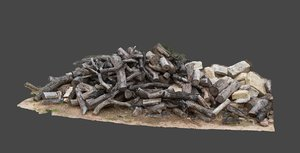 photoscan pile debris model