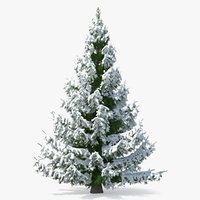3D norway spruce heavy snow model