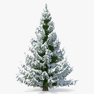 3D norway spruce heavy snow model