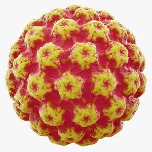 virus bacteria 3D model