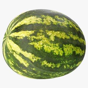 watermelon 02 3D model