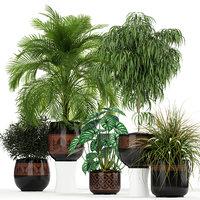3D plants 182