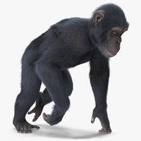 chimpanzee walking animal dark 3D model