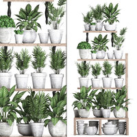 3D vertical garden plants