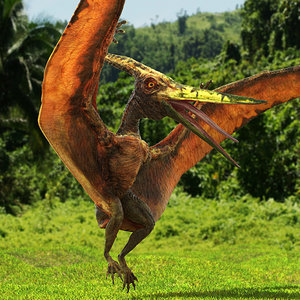 pteranodon flying carnivorous reptile 3D model