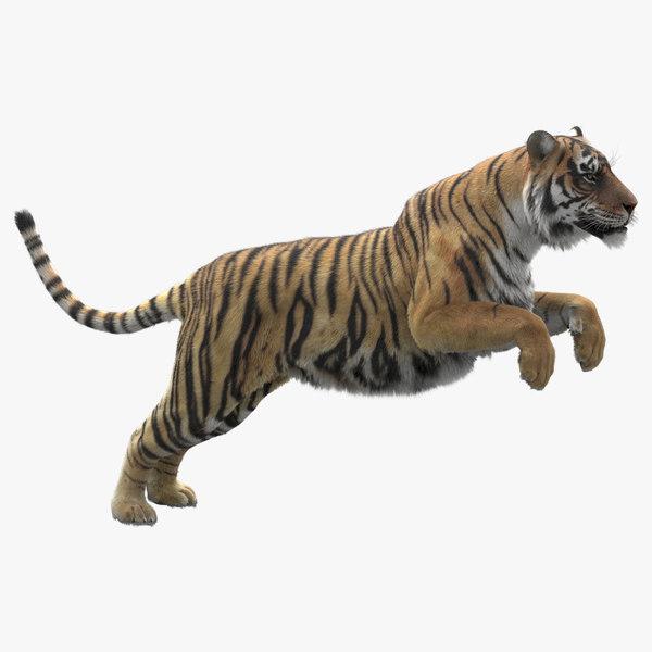 realistic rigged tiger fur 3D model