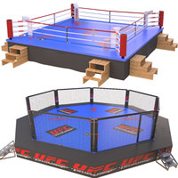 3D fighting arenas ufc