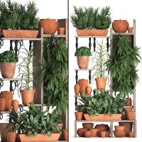 vertical garden plants 3D model