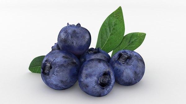 3D bluberries