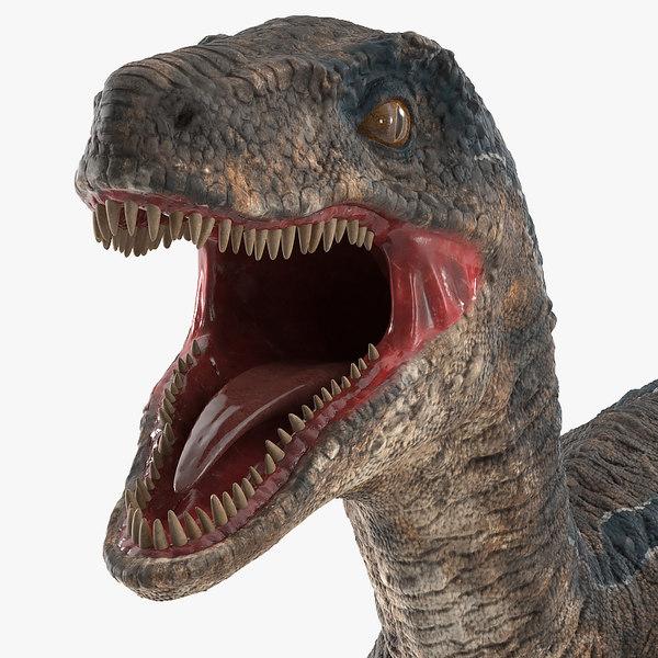 3D model velociraptor rigged