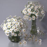 flower bouquet chamomile daisy 3D
