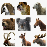 Animal Collection Megapack