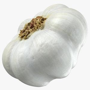 garlic 05 3D model