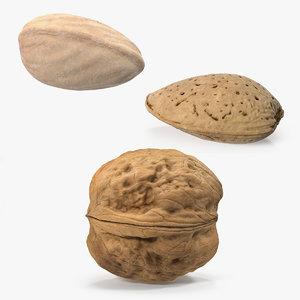 nuts 2 3D model