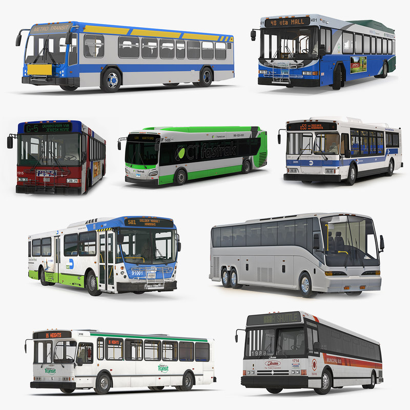 buses 8 bus 3D
