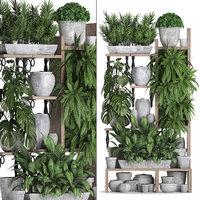 3D model vertical exotic plants