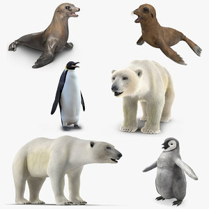 3D arctic animals