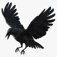 3D crow animations