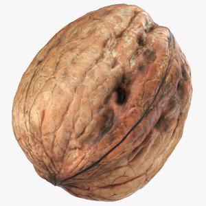 walnut 05 3D model