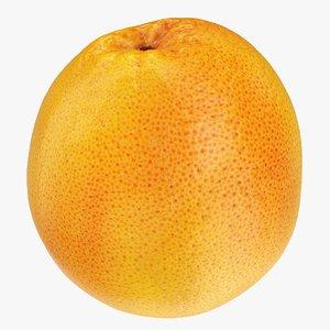 3D model grapefruit 02 hi polys