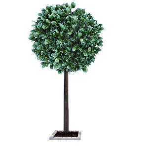 3D city tree