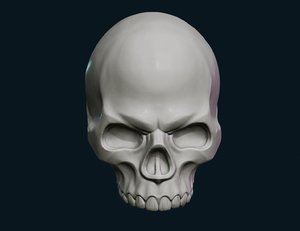 skull faces 3D model