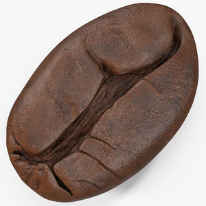 3D coffee bean roasted 4 model