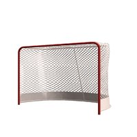 goal net frame model