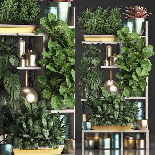 3D vertical exotic plants