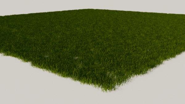 3D cut grass