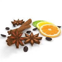 3D model cinnamon spices