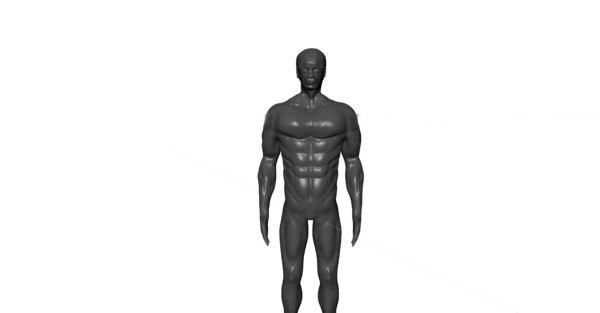 sculpted bodybuilder base mesh 3D model