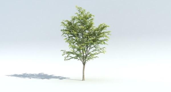 3D model wind tree