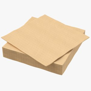brown napkin 3D model