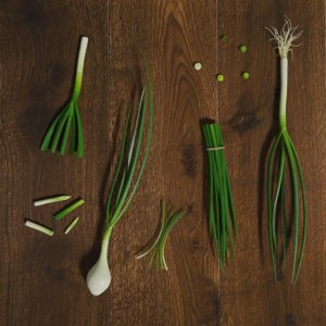 3D green onion photorealistic scene