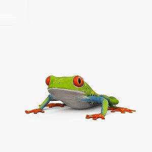 tree frog model