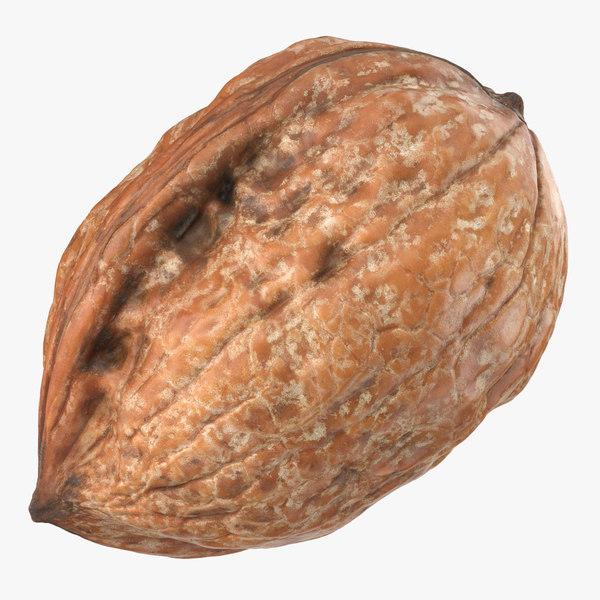 walnut 03 3D model