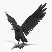 raven landing rigged animate 3D
