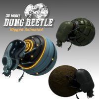 dung beetle model