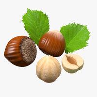 3D model hazelnut leaves seed nuts