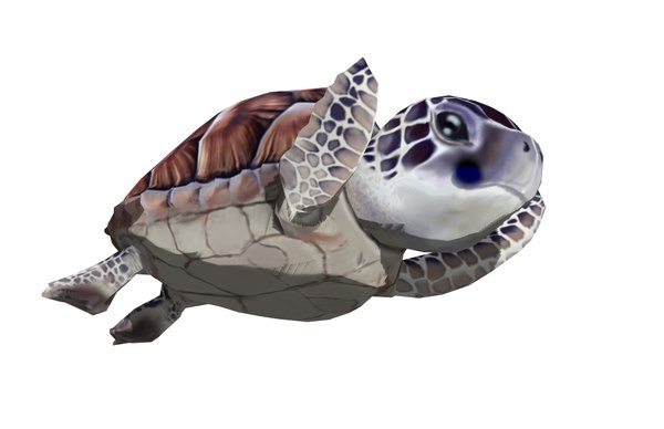 sea turtle animation 3D model