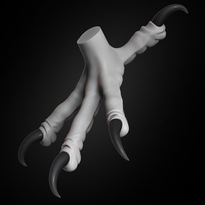 eagle claw animal 2019 3D model