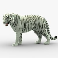 tiger animation fur 3D model
