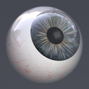 3D eye realistic human characters model