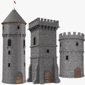 3D model real castle towers