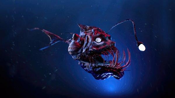 angler fish 3D