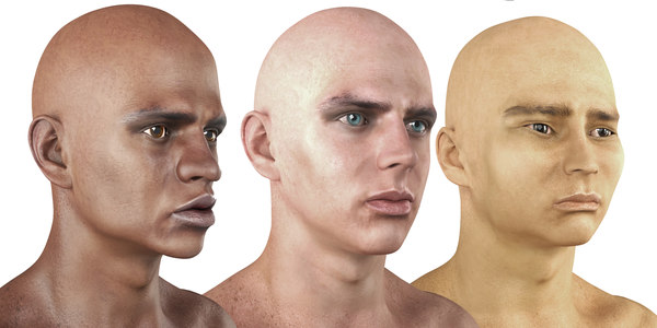 man nationalities races rigged 3D model