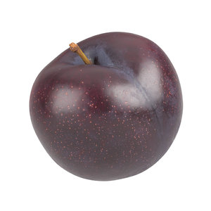 3D photorealistic scanned plum model