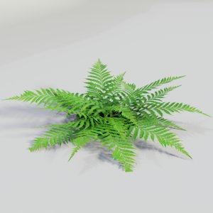 3D gardens plants