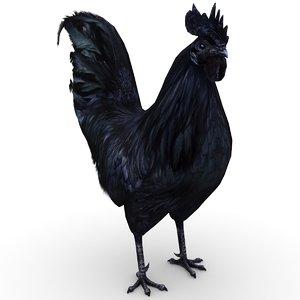 3D rooster black